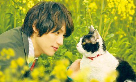 """THE TRAVELLING CAT CHRONICLES   ผม แมว และการเดินทางของเรา""  ชวนคนรักแมว ร่วมวิ่งการกุศล RUN FOR CATS  รายได้ช่วยน้องแมวไร้บ้านในประเทศไทย"