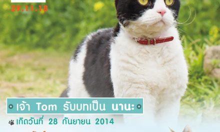 """เปิดโปรไฟล์ เจ้าเหมียว """"นานะ"""" แมวจอมหยิ่ง  จาก The Travelling Cat Chronicles  ผ่านการออดิชั่นจากแมวนักแสดงนับ 100 ตัว"""